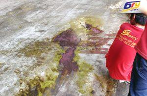 Sơn nền epoxy cho nhà máy PICENZA 3