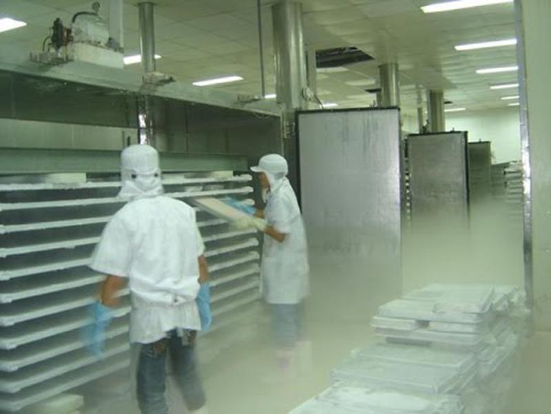 Thi công sơn sàn epoxy cho kho thực phẩm đông lạnh